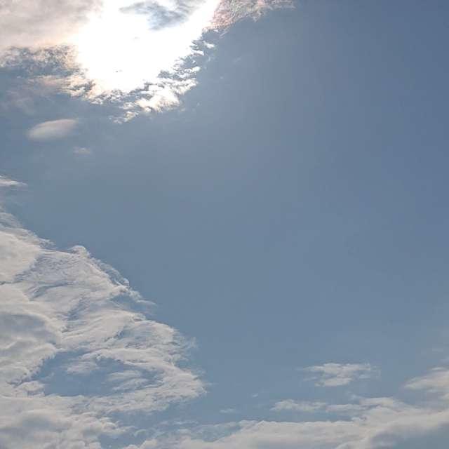 やっと晴れた 梅雨明け間近の空