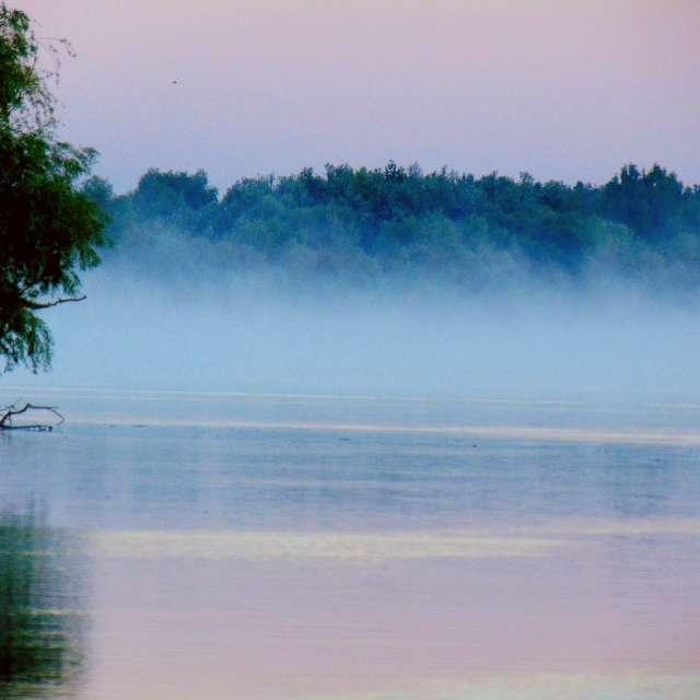 fog on the Danube river