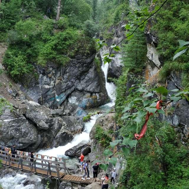 Гулять по лесу и мосту пешком