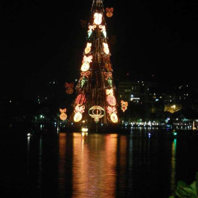 Árvore de natal da Lagoa
