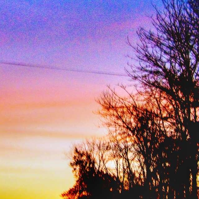 Venus at Sunrise