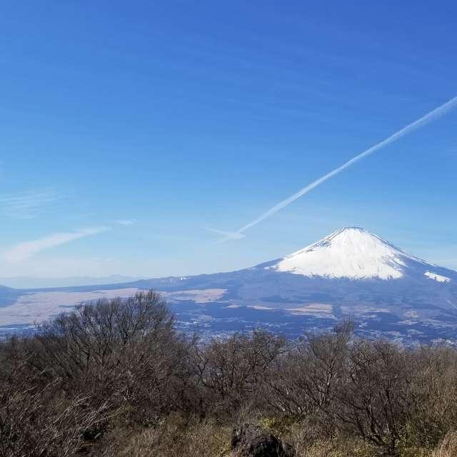 Mt. Fuj