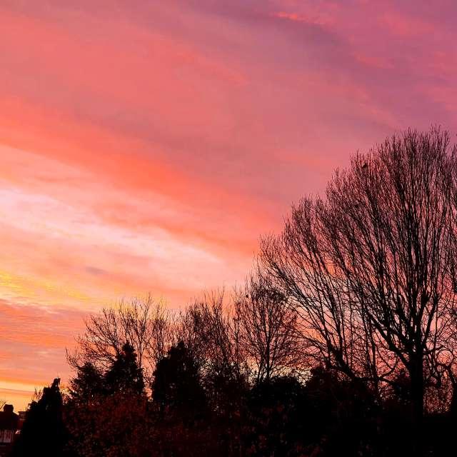 Sunrise outside my window