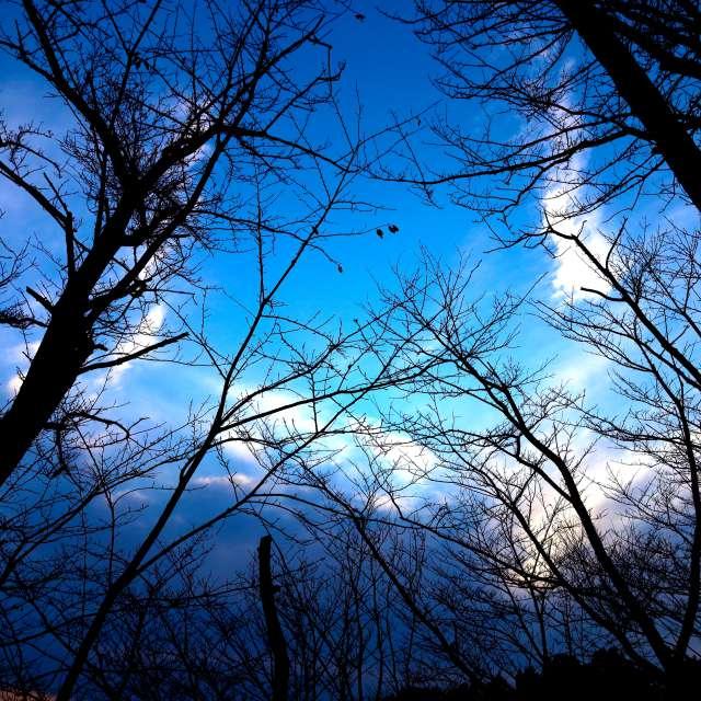 Unterschrift. Wettervorhersagen mit schönen Fotos von weawow Fotos Welt