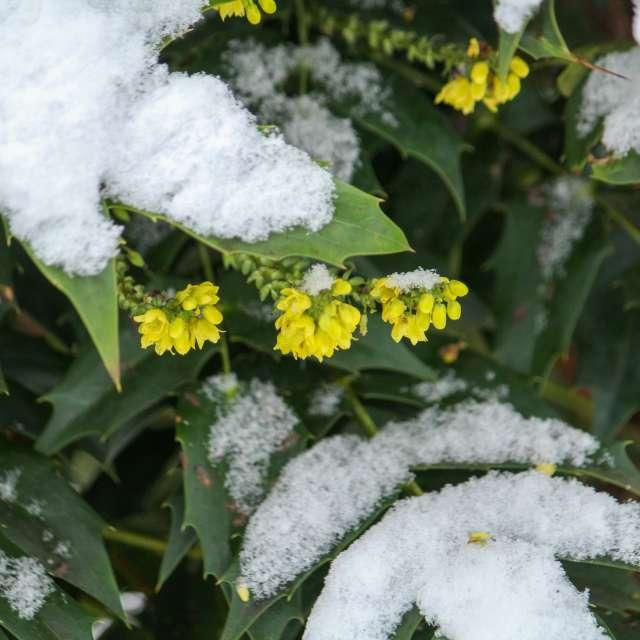 Kleiner Wintereinbruch