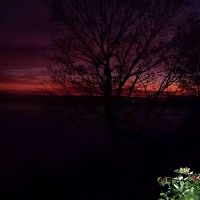 Sun rise baby