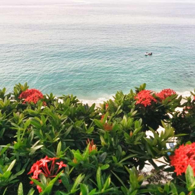 Beautiful Puerto Vallarta
