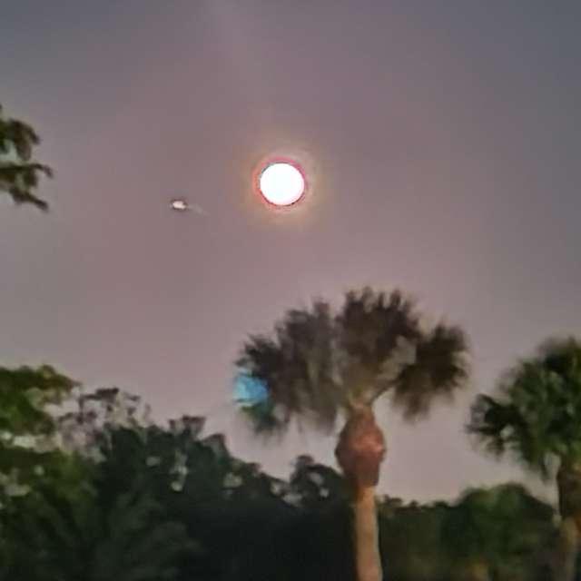 Moon Over Sarasota