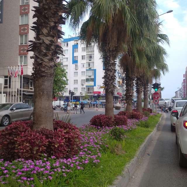 Antalya Güllük caddesi