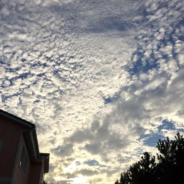 無数の雲が織り成す夕景