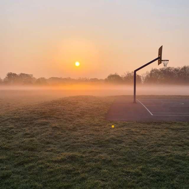Morgenzon in het park