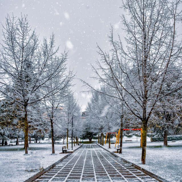 Snowing street