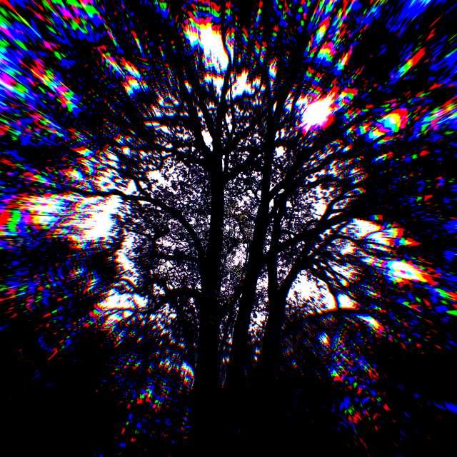 trippy tree ! ☆☆▪☆☆