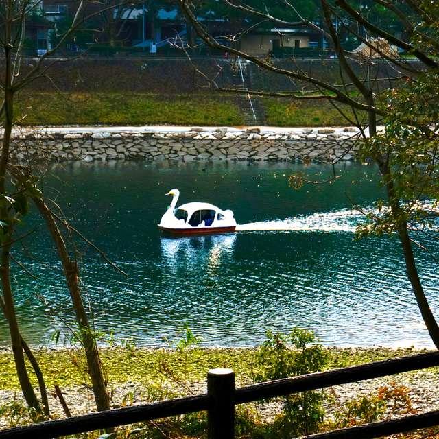 水辺の穏やかな午後