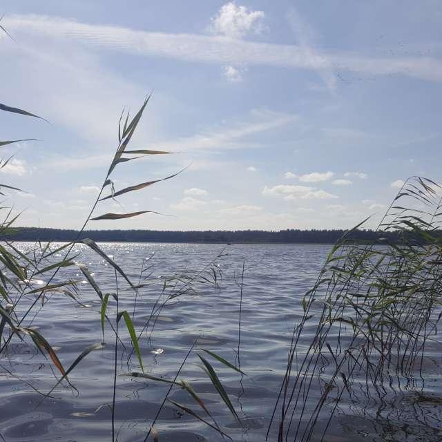 Озеро Лиласте, Латвия