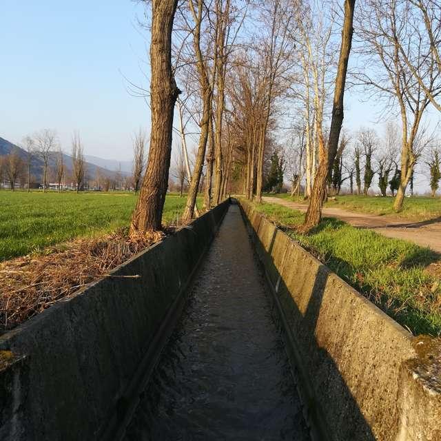 Campagna pianura Padana