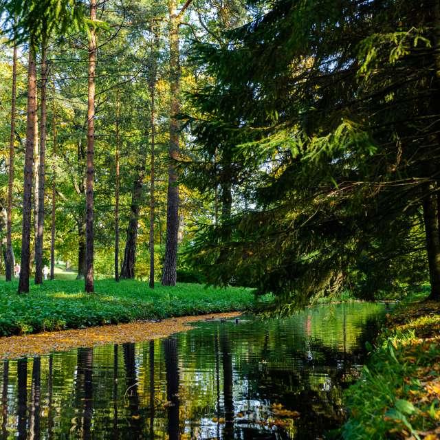 Autumn Season in Russia