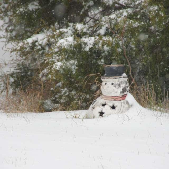A snowy snowman