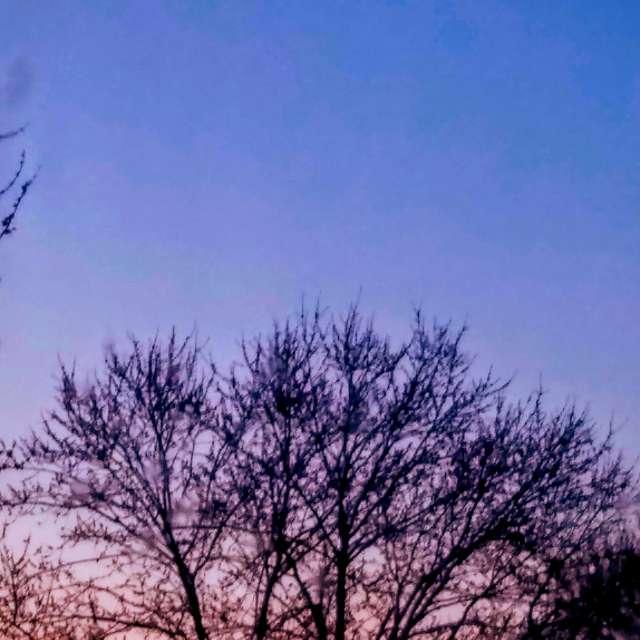 Morning Crescent Moon