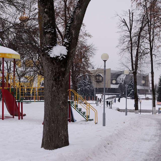 Зима. Парк.