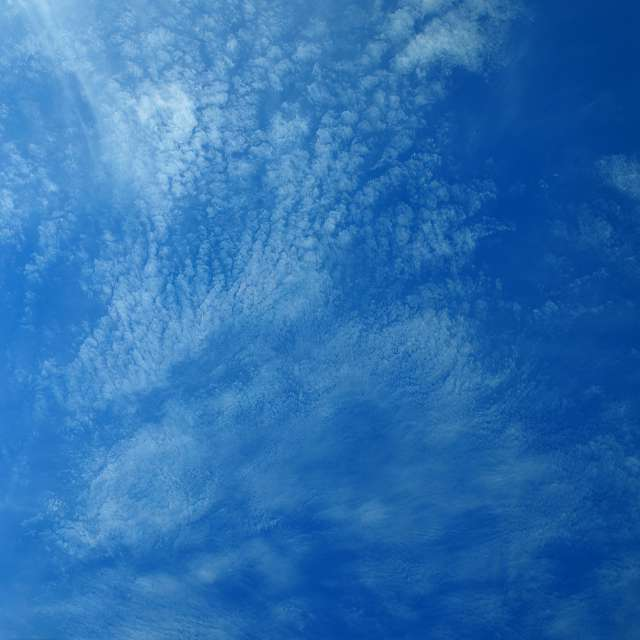 Mixed Cloud Types