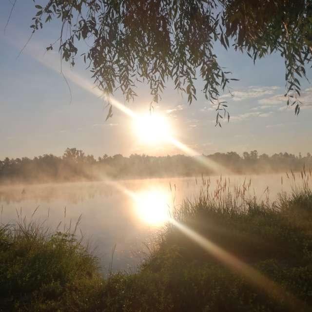 4 утра туман на реке припять