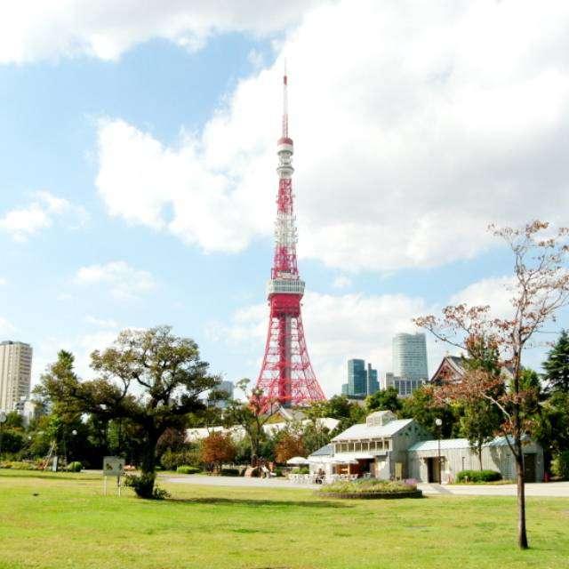 芝公園で撮影した東京タワー