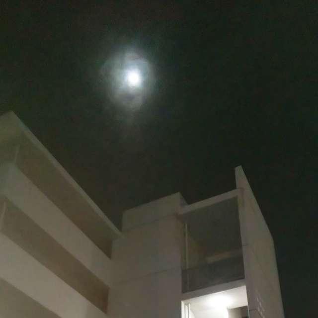 頭上に月が輝いているー思わず撮影したー
