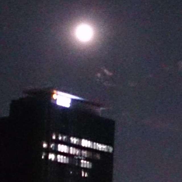 夜の西新宿
