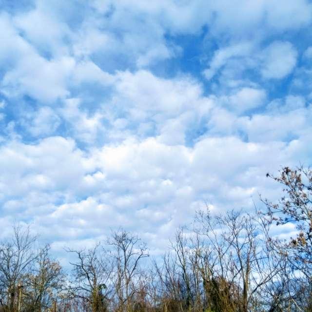 Lainate sky