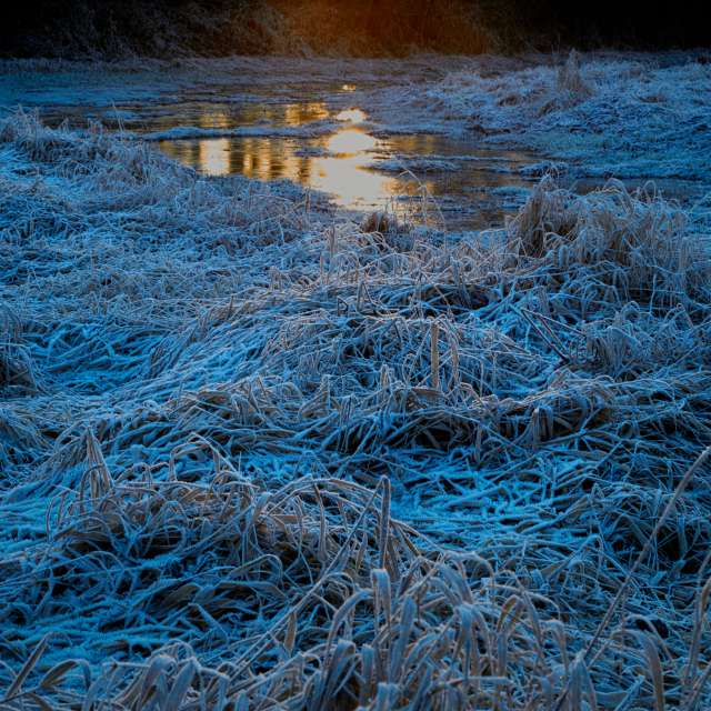 Sunrise, Hoar-Frost, BC, CA