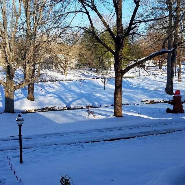 Avalon Valley NC, melt down