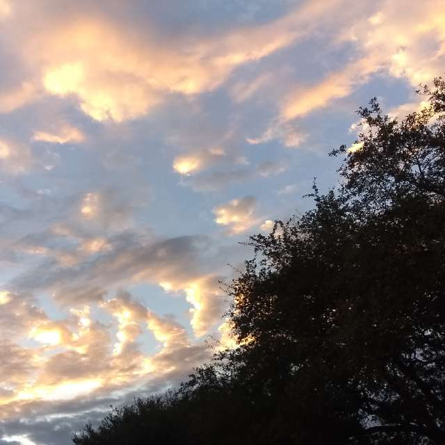 Dawn in South Houston