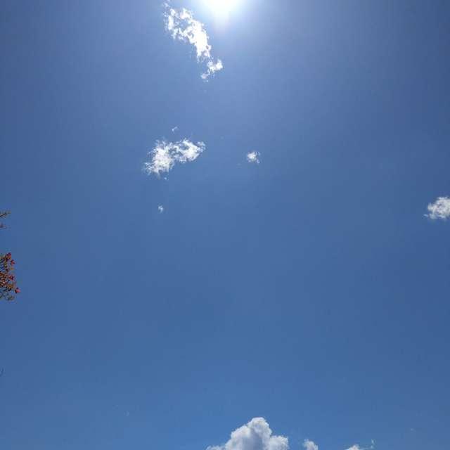 Sti🐤# 晴天の The Sun