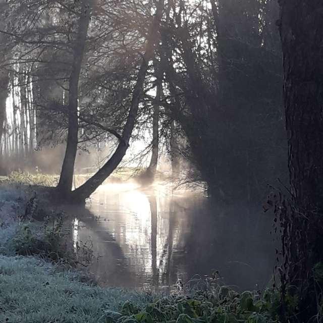 Un matin d hiver dans l Indre