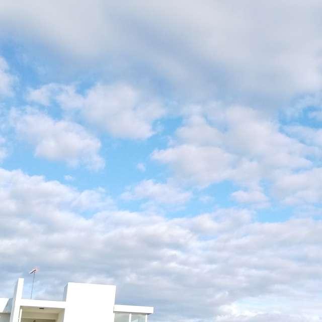 今日は天気がよい❗️青空をーー
