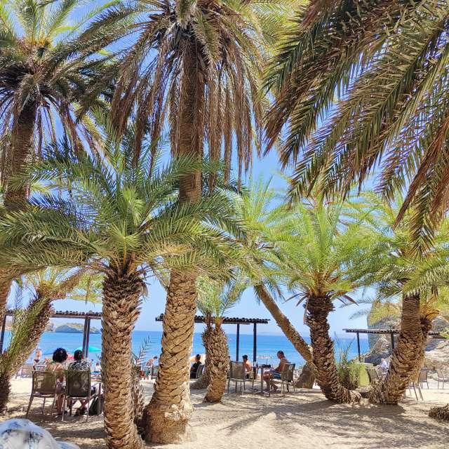 Palm beach Vai Crête
