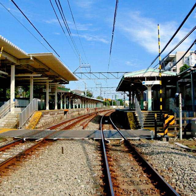 西部多摩川線新小金井駅を撮影