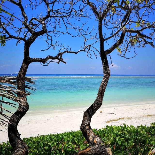 Maledives - Indian Ocean