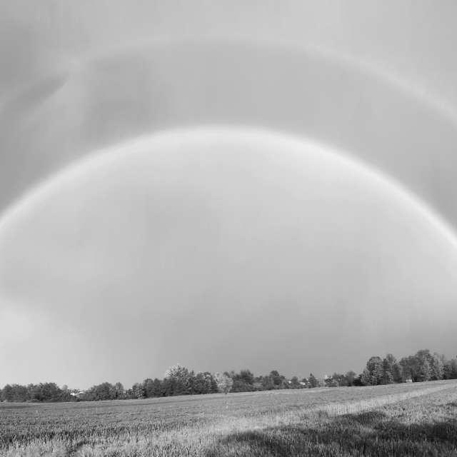Doppio arcobaleno bn