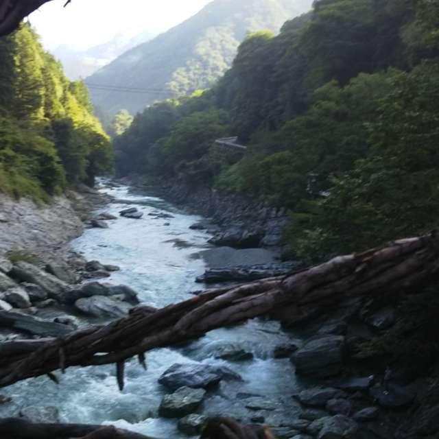 きれいな河