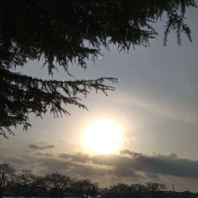 冬の夕暮れの光景です。