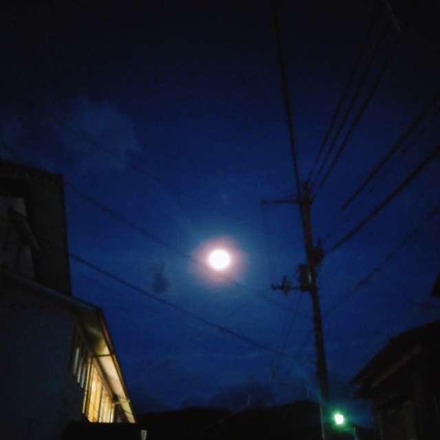 月明かりの帰路