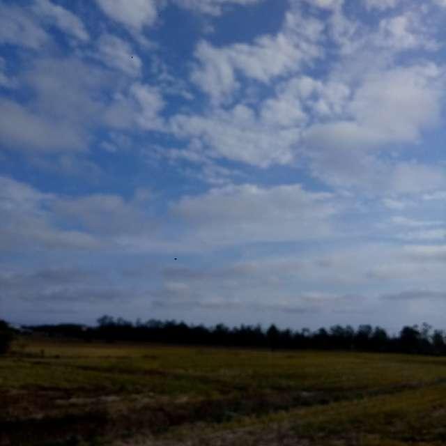 Araranguá rural