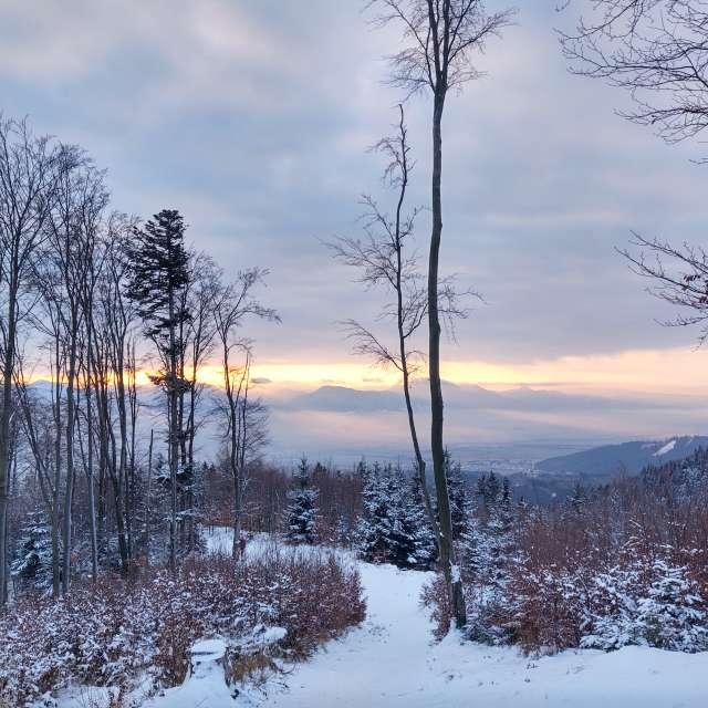 Sunrise during winter