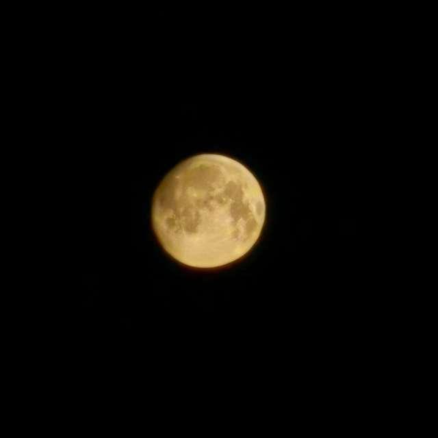 Луна в мороз - 37