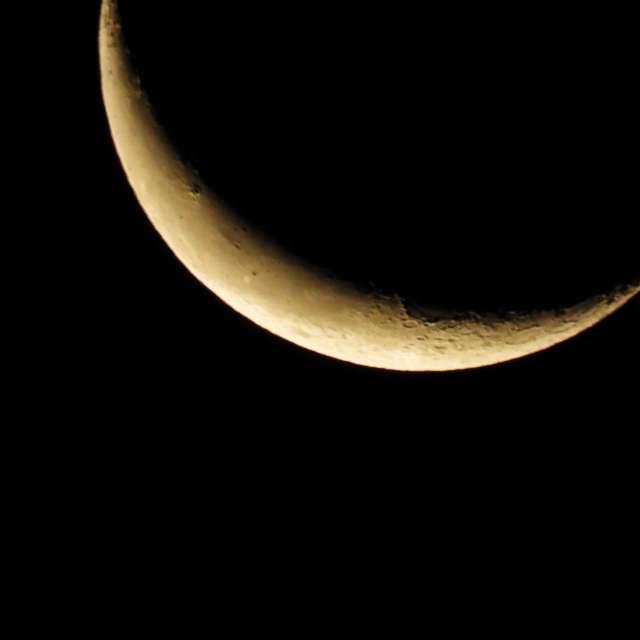 Half moon at dawn