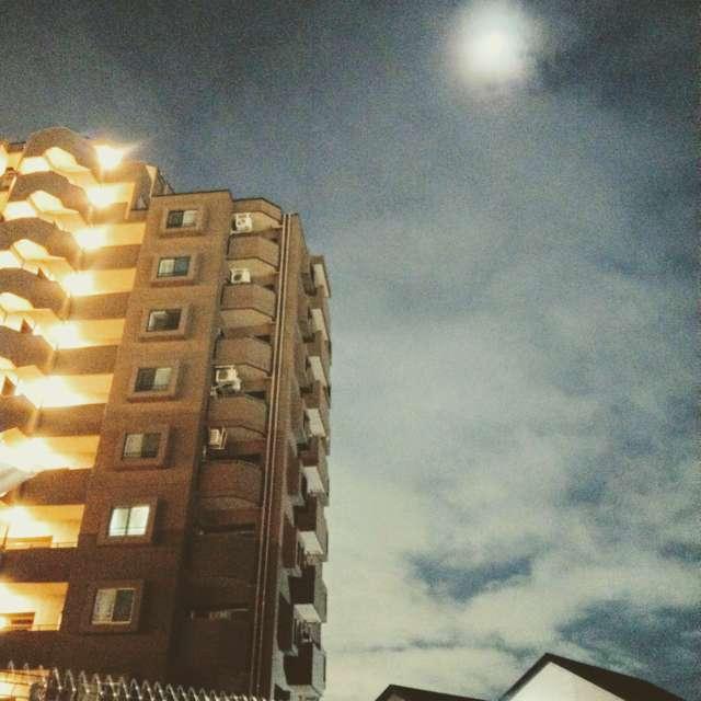 Sti🐤# ライトが映える、お月さま