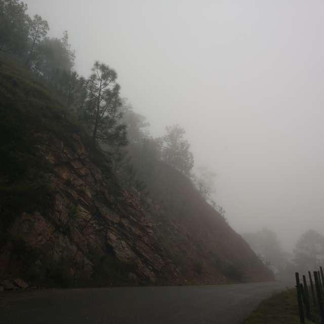 En la niebla