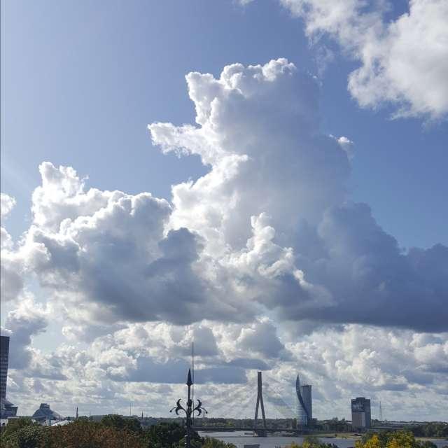 Облачный Винни